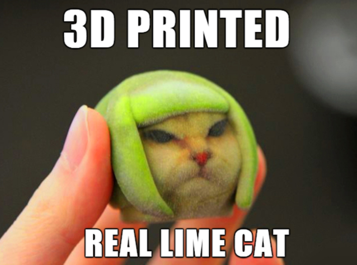3D Printed Real Lime Cat Lime Meme