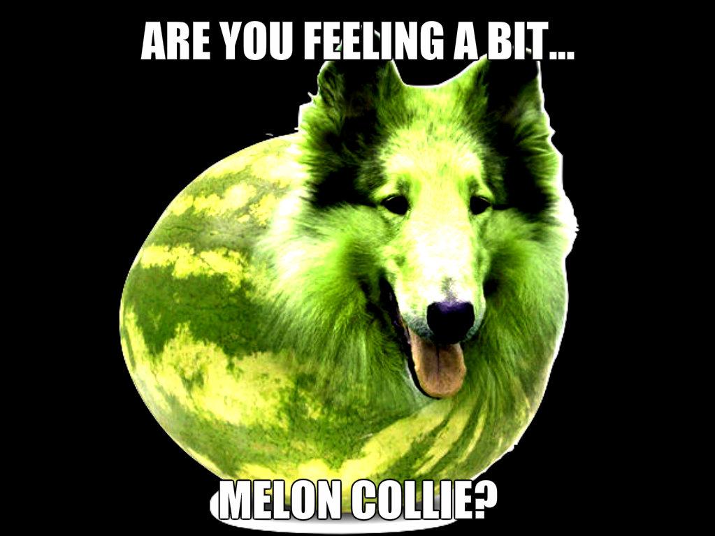 Are You Feeling A Bit Melon Meme