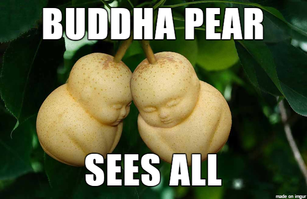 Buddha Pear Sees All Pear Meme