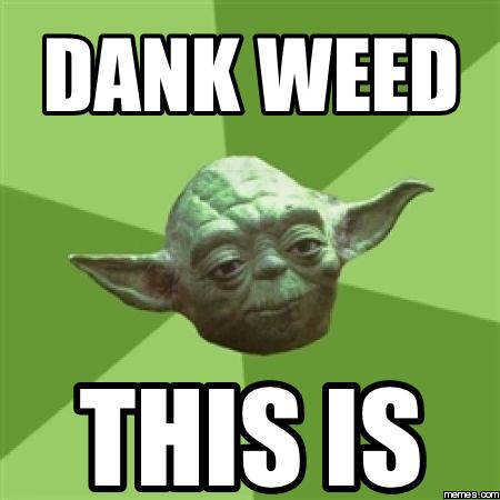 Dank Weed This Dank Weed Memes