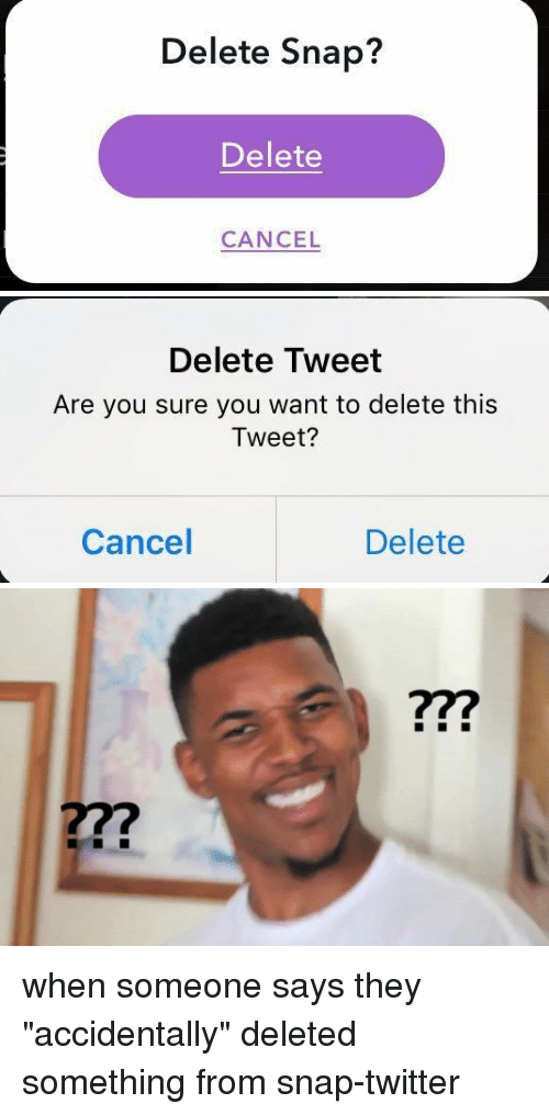 Delete Tweet Are Snapped Meme