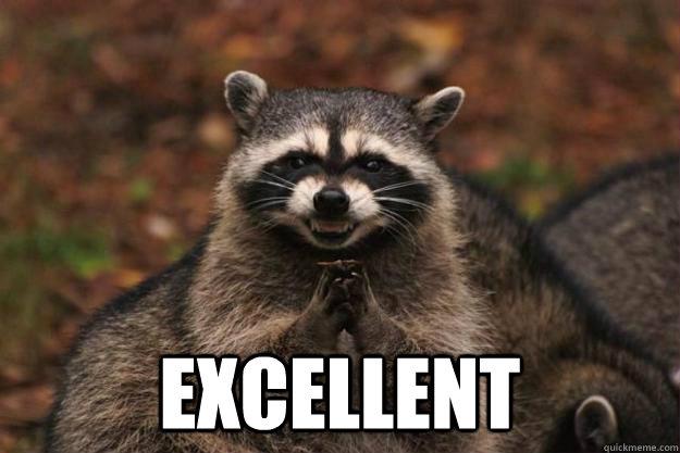 Excellent Raccoon Meme