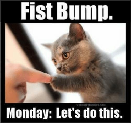 Fist Bump Monday Lets Do This Meme