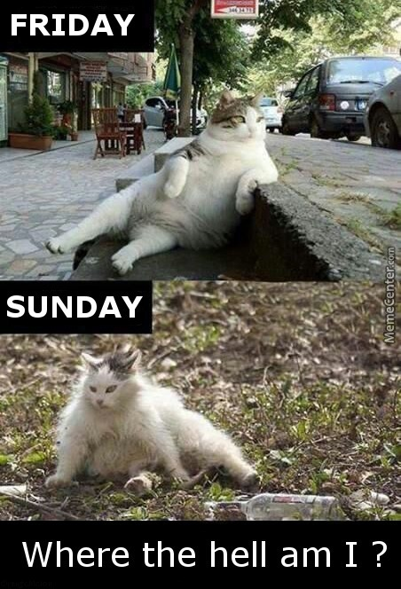 Friday Sunday Where The Sunday Meme