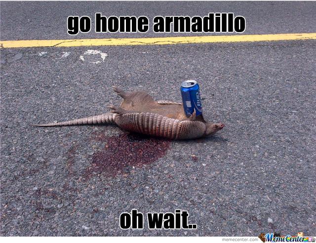 Go Home Armadillo Oh Wait Armadillo Meme