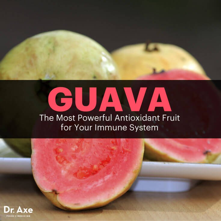Guava The Most Powerful Guava Meme