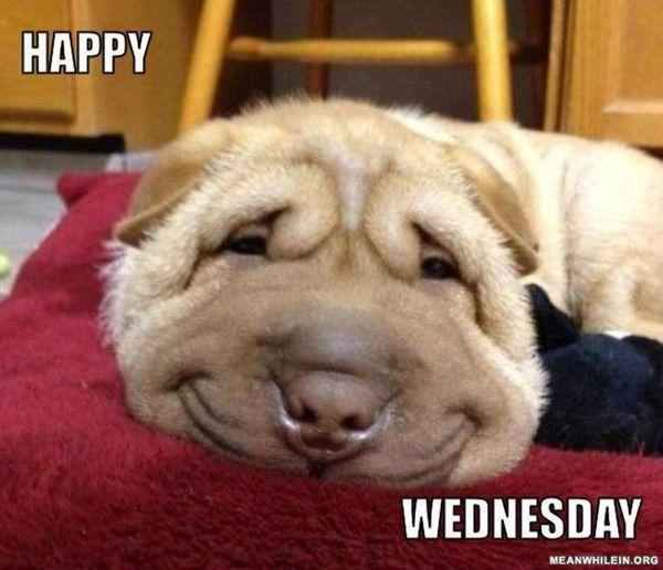 Happy Wednesday Wednesday Meme