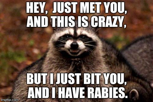 Hey, Just Met You And This Raccoon Meme