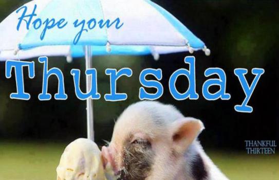 Hope You Thursday Thursday Meme