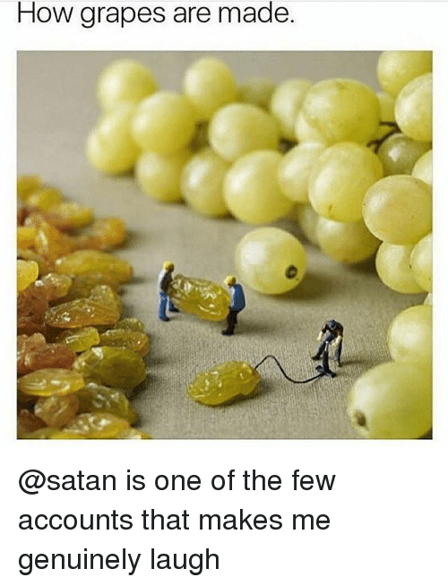 How Grapes Are Made Grape Meme