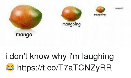 I Don't Know Why Mango Meme