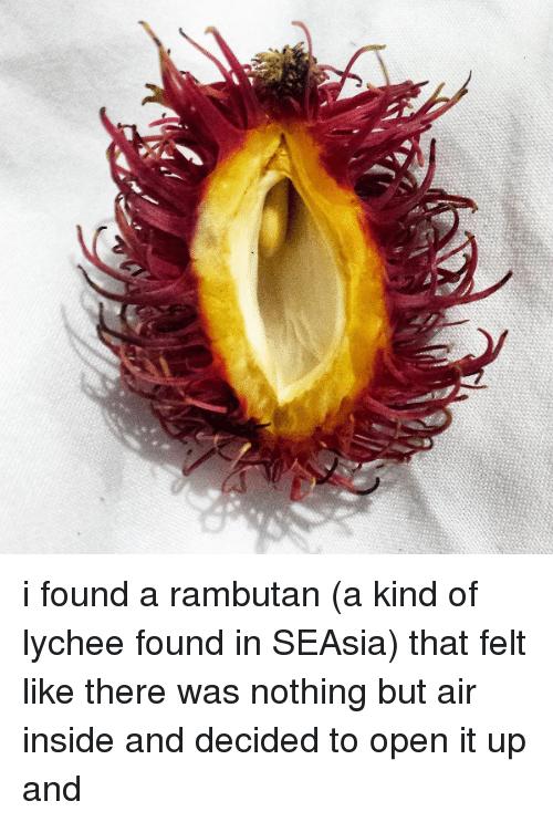 I Found A Rambutan Lychee Meme