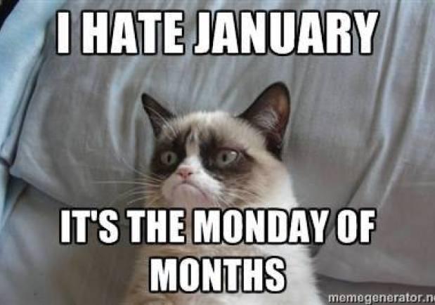 I Hate January It's January Meme