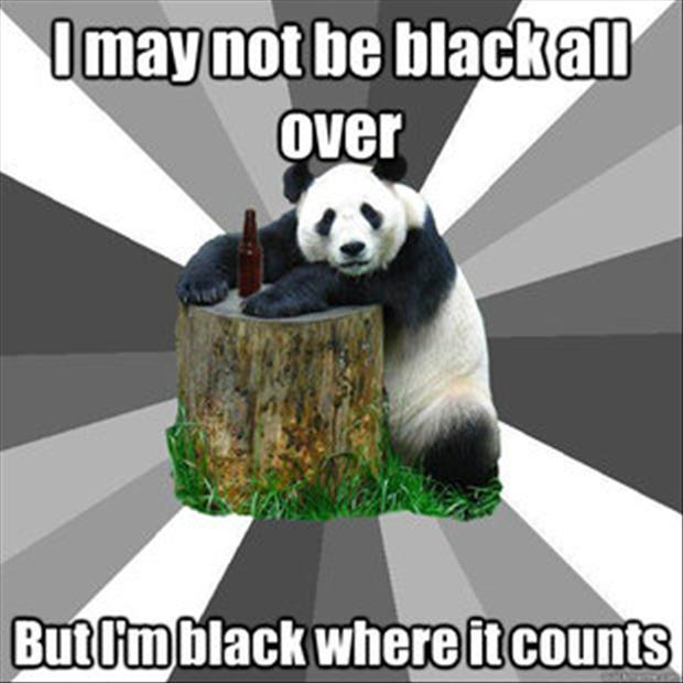 I May Not Be Black All Over Black Bear Meme