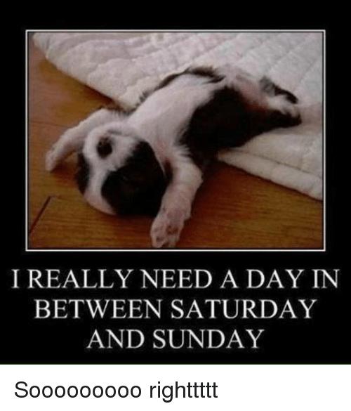 I Really Need A Day Sunday Meme