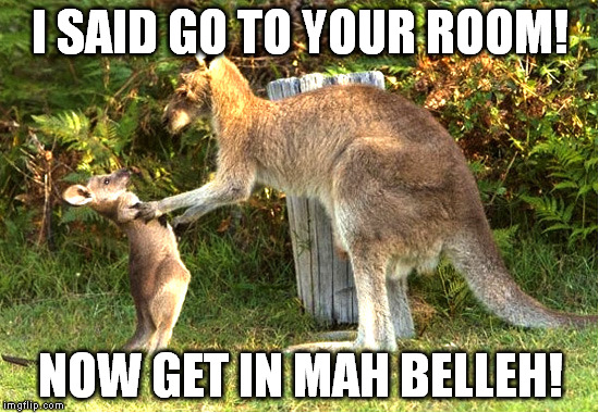 Do you even lift kangaroo - photo#32