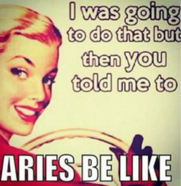 I Was Going To Do That But Then You Aries Meme