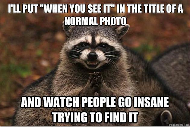 I'll Put When You See It Raccoon Meme