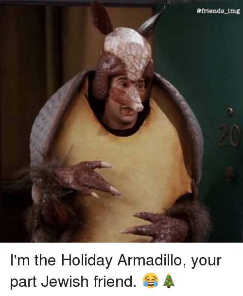I'm The Holiday Armadillo Your Armadillo Meme
