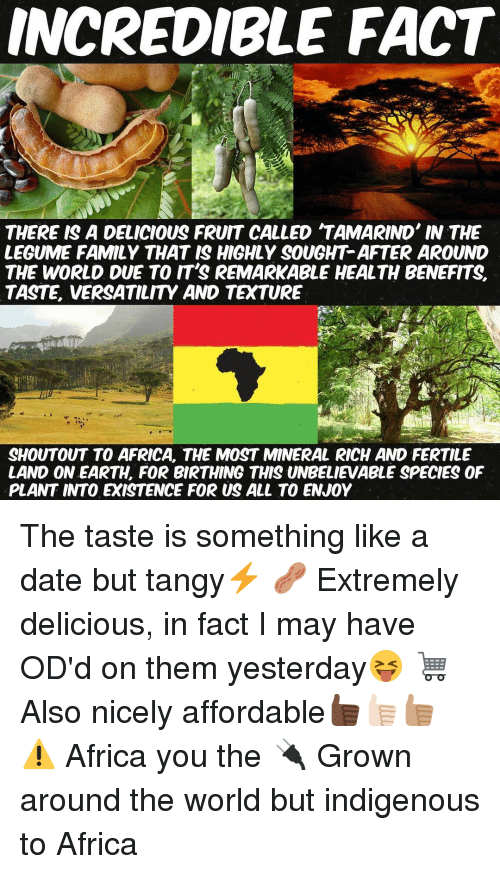 Incredible Fact There Is Tamarind Meme