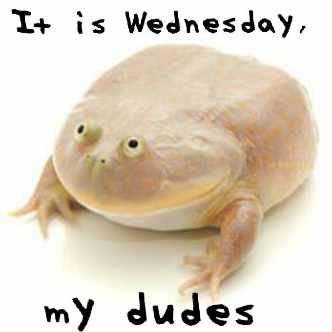 It Is Wednesday My Dudes Wednesday Meme