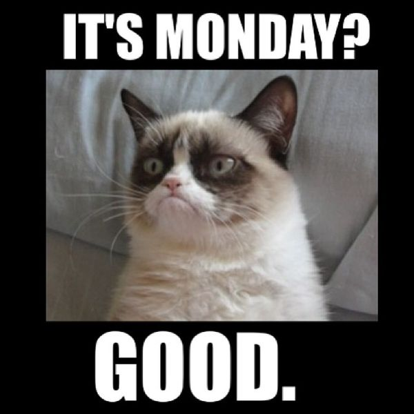 It's Monday Good Monday Meme