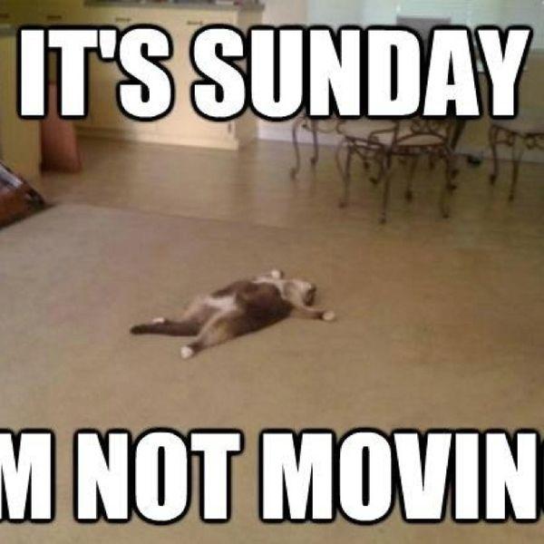 It's Sunday Im Not Movin Sunday Meme