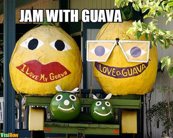 Jam With Guava Guava Meme