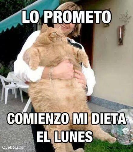 Lo Prometo Comienzo Memes De Dieta