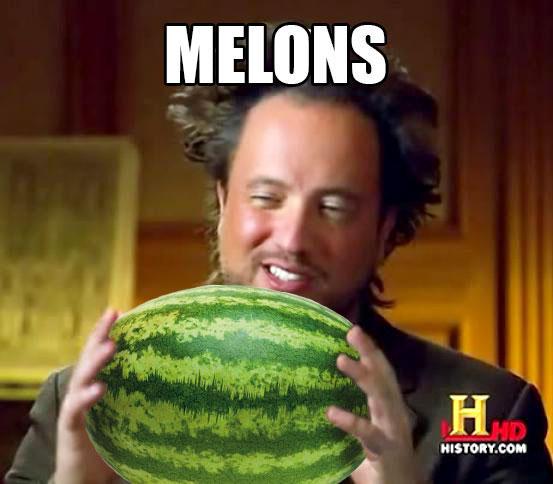 Melons Melon Meme