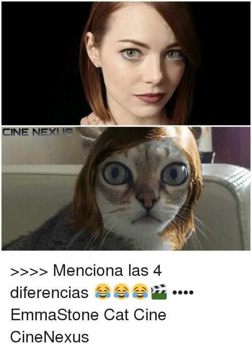 Menciona Las 4 Emma Stone Cat Meme