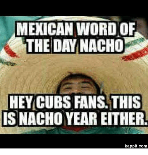 Mexican Word Of The Day Nacho Cub Meme