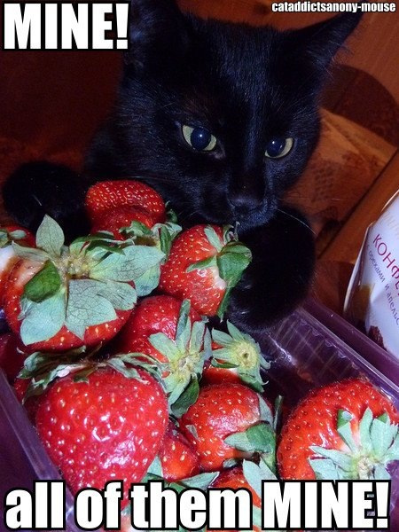Mine! All Of Them Strawberry Meme