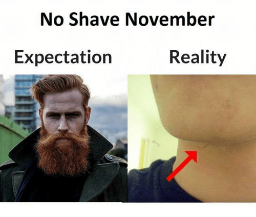 No Shave November Expectation November Meme