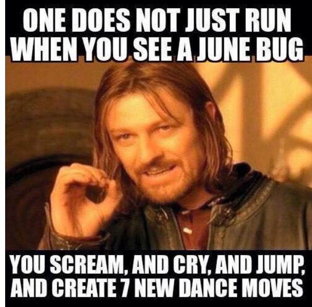 One Does Not Just June Meme