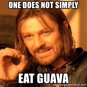 One Does Not Simply Guava Meme
