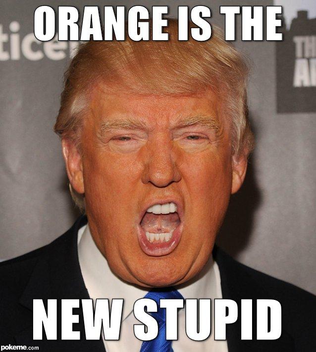 Orange Is The New Stupid Orange Meme