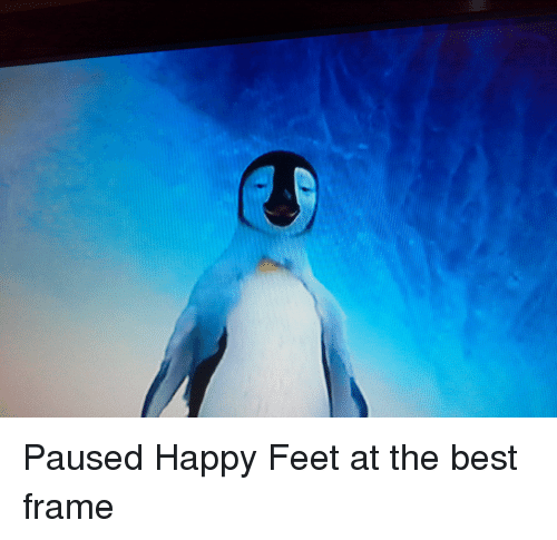 19 Very Funny Happy Feet Meme Images And Photos Memesboy
