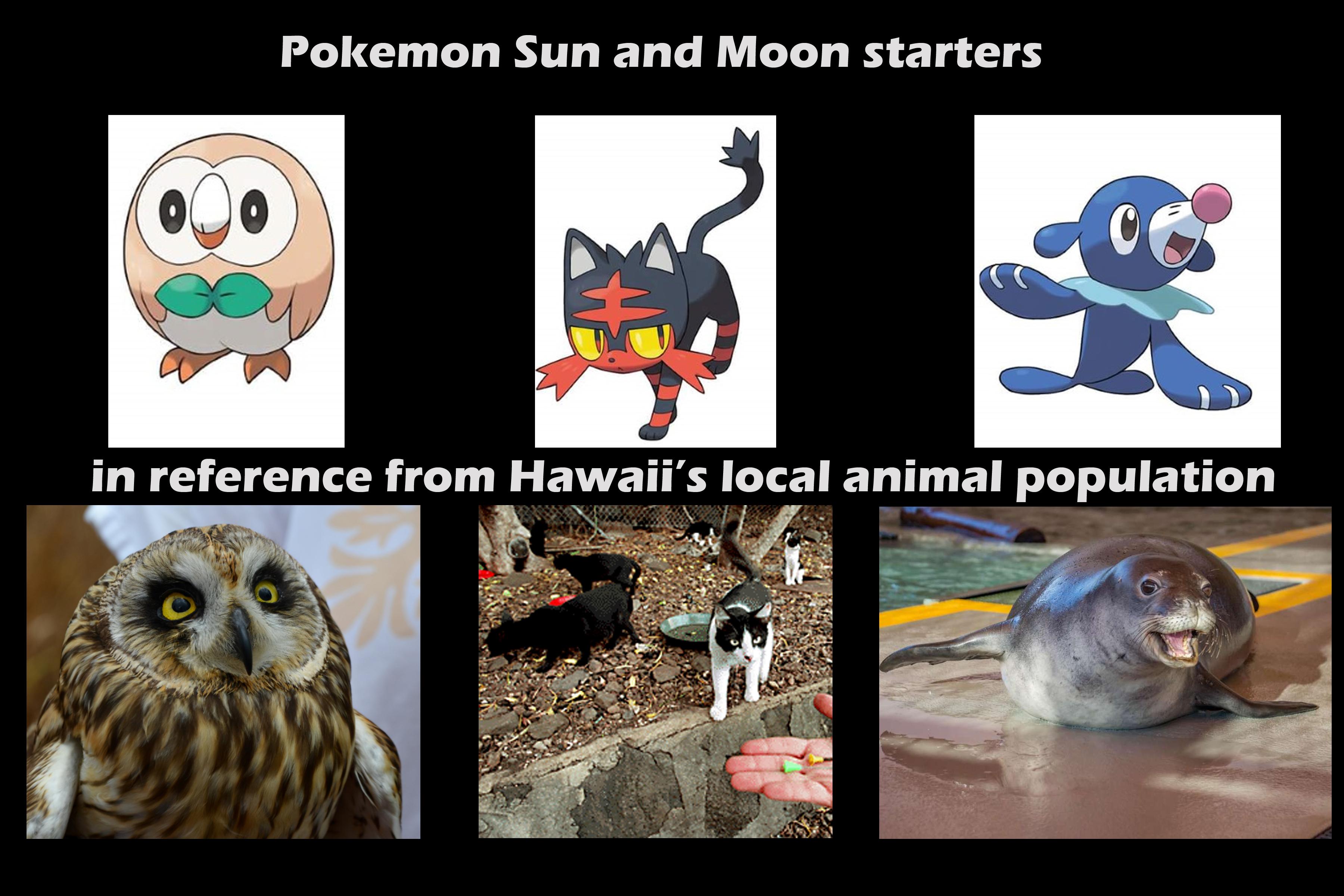 19 Funniest Pokemon Sun And Moon Meme Pictures | MemesBoy