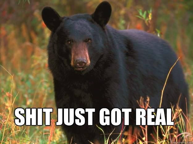 Shit Just Got Real Black Bear Meme