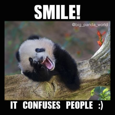 Smile! It Confuses People Wednesday Meme