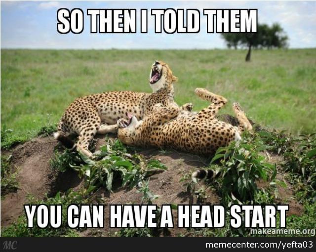 So Then I Told Them Cheetah Meme