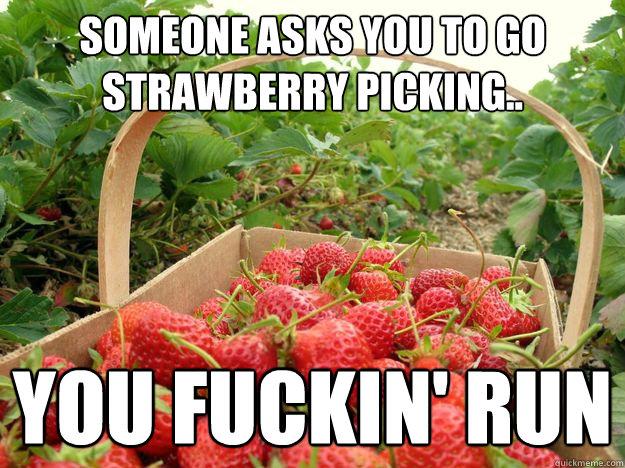 Somone Asks You To Go Strawberry Meme