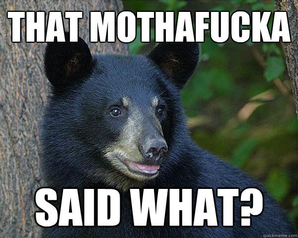 That Mothafucka Said What Black Bear Meme