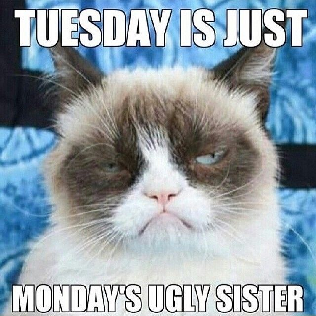 Tuesday Is Just Monday's Ugly Sister Tuesday Meme