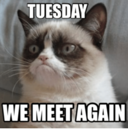 Tuesday We Meet Again Tuesday Meme