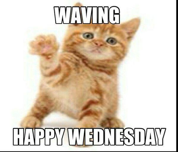 Waving Happy Wednesday Wednesday Meme