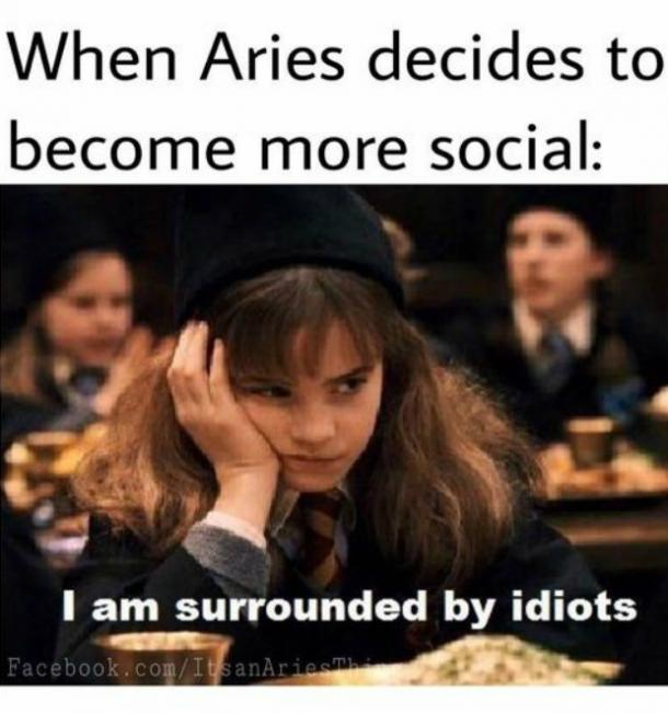 When Aries Decides To Become More Social Aries Meme