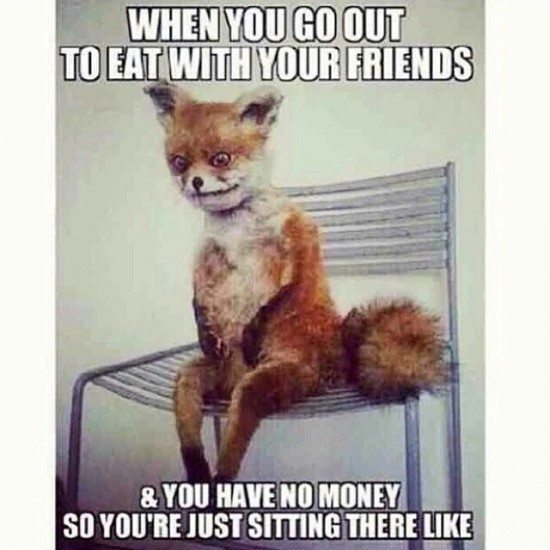 When You Go Out To Eat Fox Meme