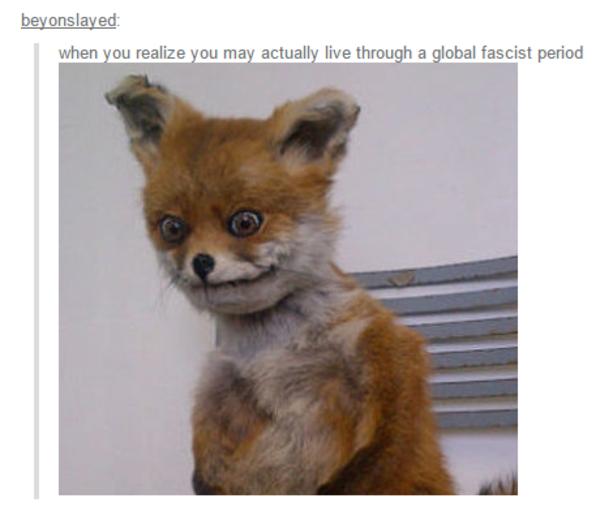 When You Realize You May Fox Meme